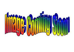Ms. Jessica Mayfield