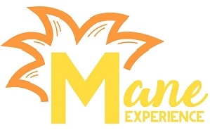 Meet 'The Mane Experience'